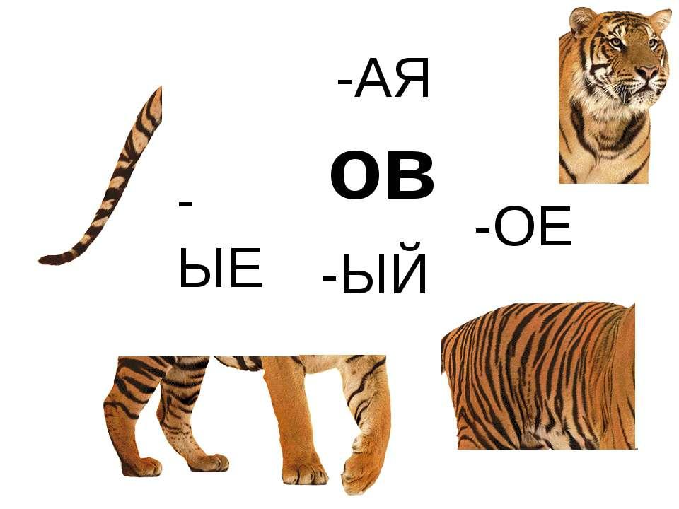 "-АЯ -ЫЙ -ОЕ -ЫЕ ов http://www.deti-66.ru/конкурс ""Мастер презентаций"""