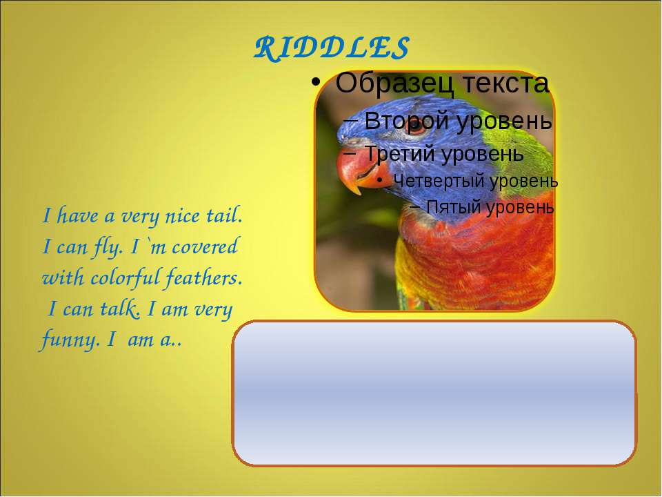 I have a very nice tail. I can fly. I `m covered with colorful feathers. I ca...