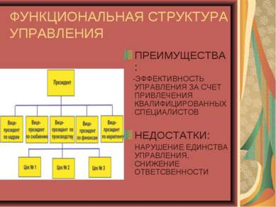 ФУНКЦИОНАЛЬНАЯ СТРУКТУРА УПРАВЛЕНИЯ ПРЕИМУЩЕСТВА: -ЭФФЕКТИВНОСТЬ УПРАВЛЕНИЯ З...