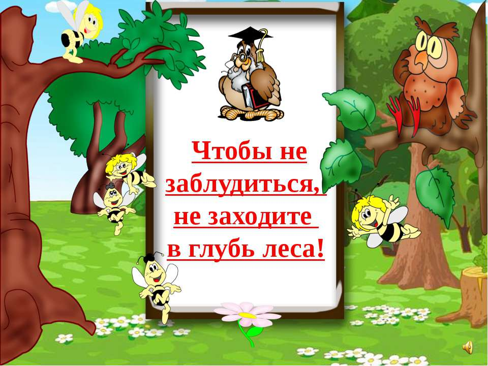 Чтобы не заблудиться, не заходите в глубь леса!