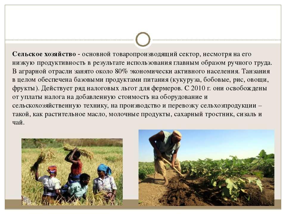 Сельское хозяйство- основной товаропроизводящий сектор, несмотря на его низк...