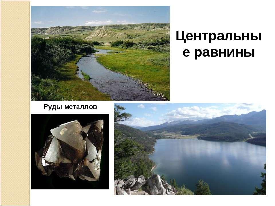Центральные равнины Руды металлов