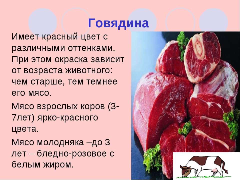 презентация на тему технология производства говядины в брянске телепередачи канале Домашний