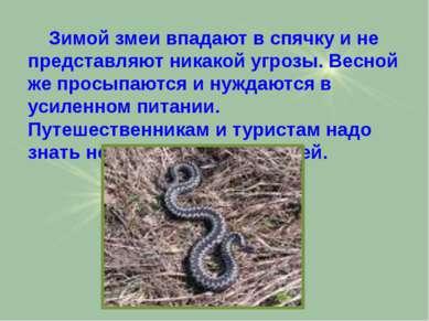 Зимой змеи впадают в спячку и не представляют никакой угрозы. Весной же просы...