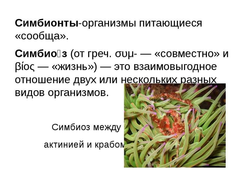 Симбионты-организмы питающиеся «сообща». Симбио з(от греч. συμ- — «совместно...