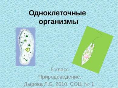 Одноклеточные организмы 5 класс Природоведение. Дырова Л.Б. 2010 СОШ № 1.