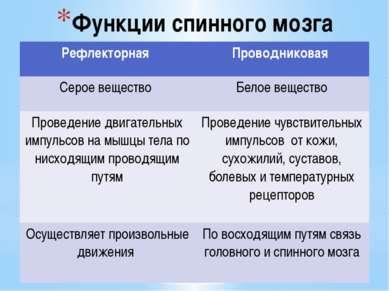 Функции спинного мозга Рефлекторная Проводниковая Серое вещество Белое вещест...