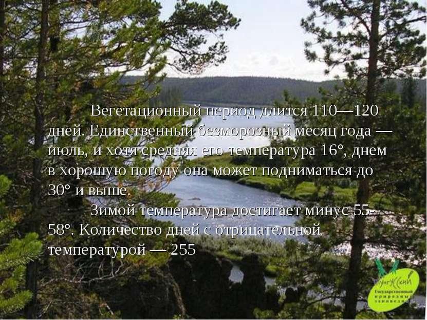 Вегетационный период длится 110—120 дней. Единственный безморозный месяц года...