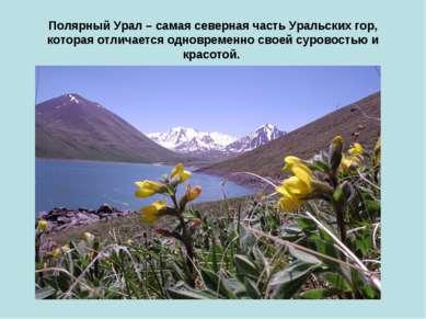 Полярный Урал – самая северная часть Уральских гор, которая отличается одновр...