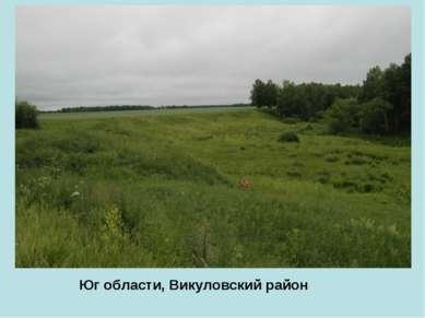 Юг области, Викуловский район