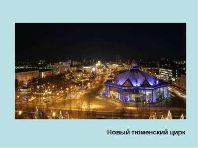 Новый тюменский цирк