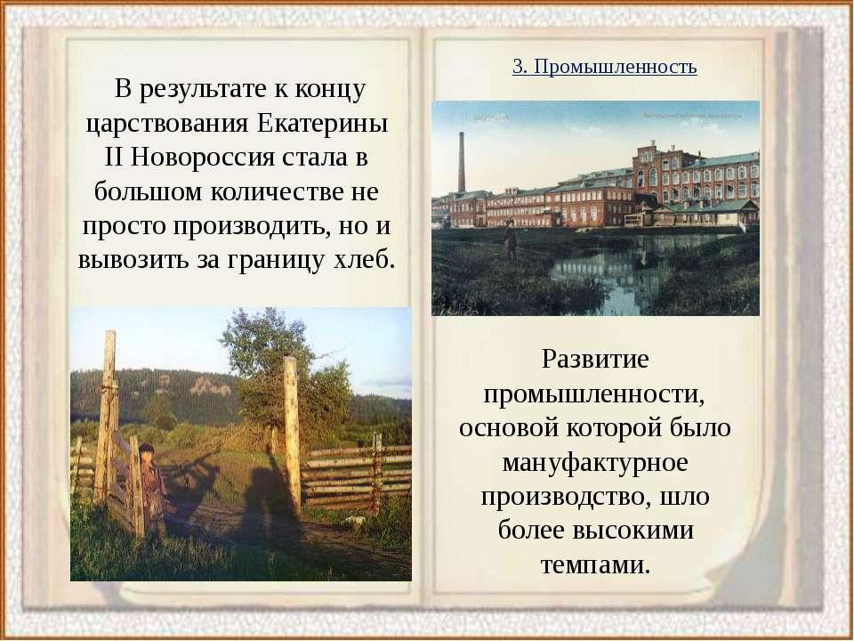 В результате к концу царствования Екатерины II Новороссия стала в большом кол...