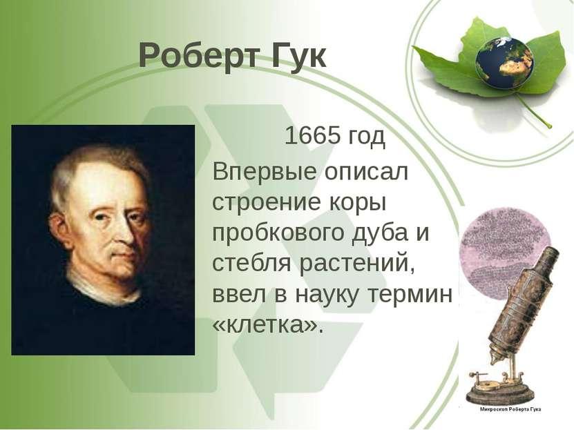 Роберт Гук 1665 год Впервые описал строение коры пробкового дуба и стебля рас...