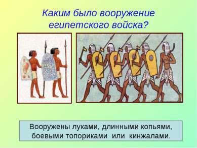 Каким было вооружение египетского войска? Вооружены луками, длинными копьями,...