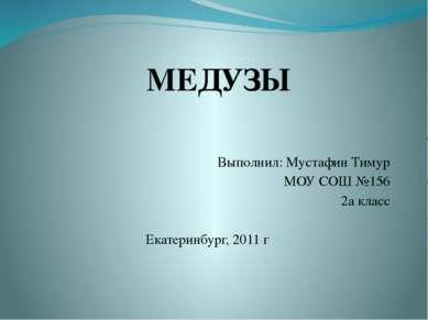 Выполнил: Мустафин Тимур МОУ СОШ №156 2а класс Екатеринбург, 2011 г МЕДУЗЫ