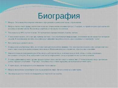 Биография Медуза - беспозвоночное морское животное с прозрачным студенистым т...