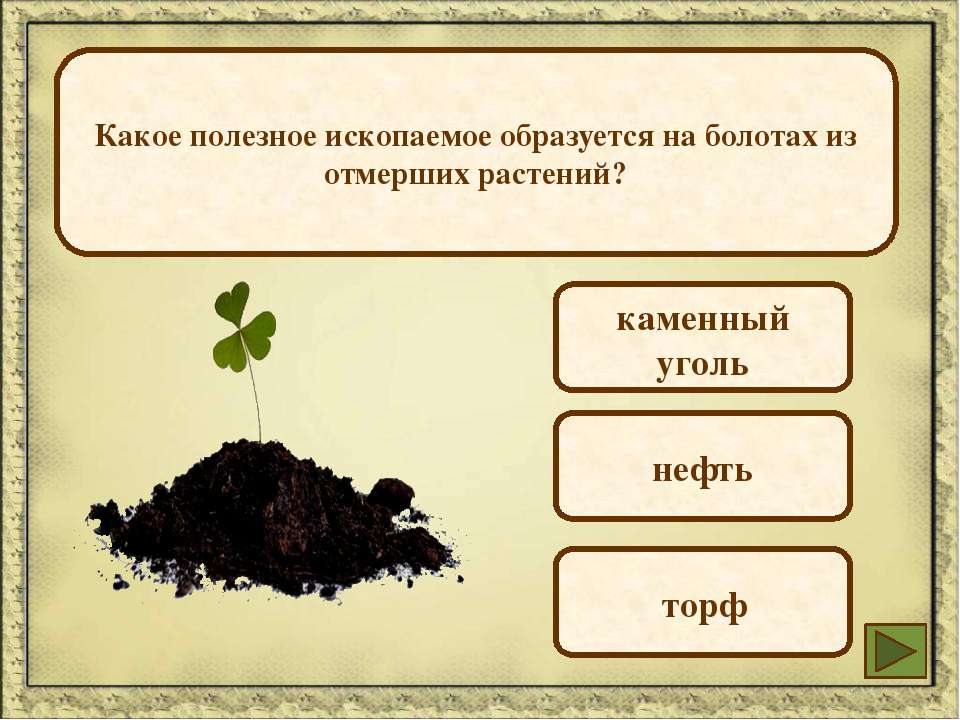 Какое полезное ископаемое образуется на болотах из отмерших растений? каменны...