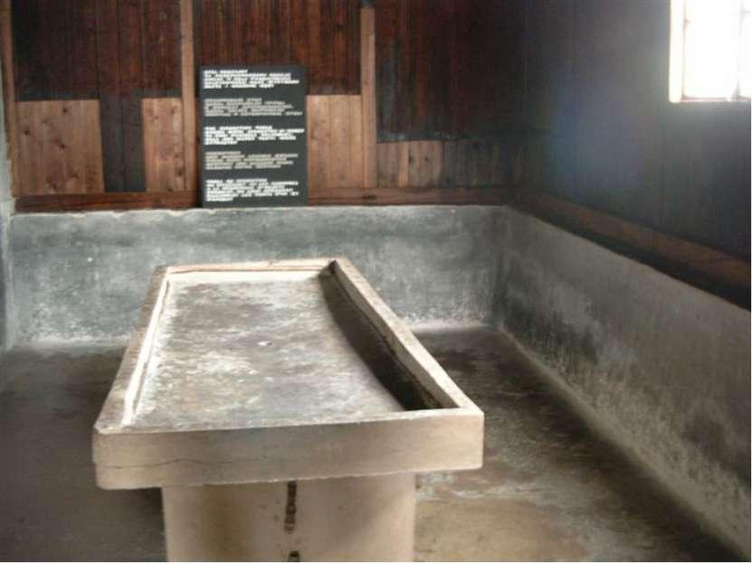 Медицинские эксперименты Заключенных подвергали: Заражению вирусами Голоду, п...
