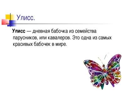 Улисс. Улисс — дневная бабочка из семейства парусников, или кавалеров. Это од...