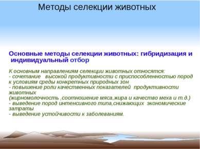 Основные методы селекции животных: гибридизация и индивидуальный отбор К осно...