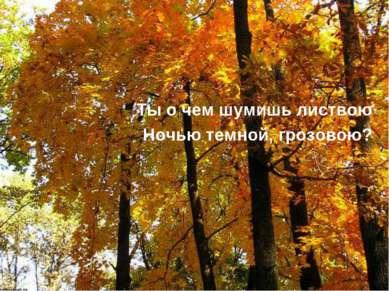Ты о чем шумишь листвою Ночью темной, грозовою?