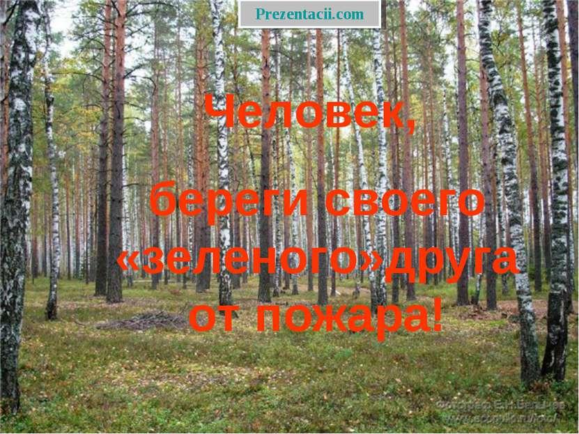 Человек, береги своего «зеленого»друга от пожара! Prezentacii.com