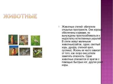 Животные степей- обитатели открытых пространств. Они хорошо обеспечены кормам...