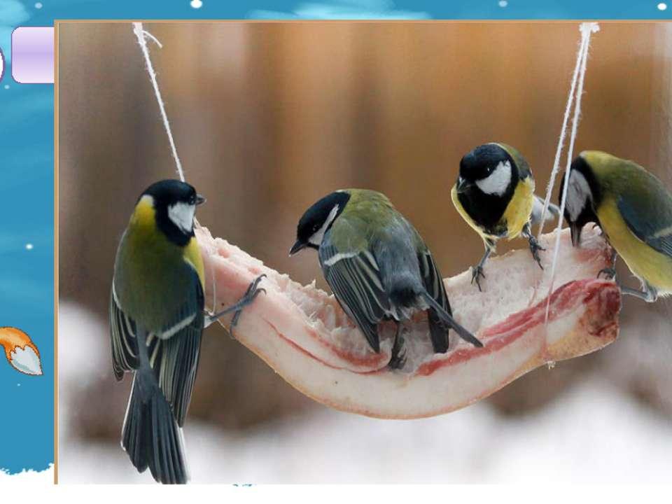 Какая птица любит кусочки сала? В2 1 2 3 4 СОРОКА СИНИЦА ВОРОНА ГЛУХАРЬ