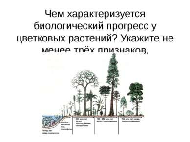 Чем характеризуется биологический прогресс у цветковых растений? Укажите не м...