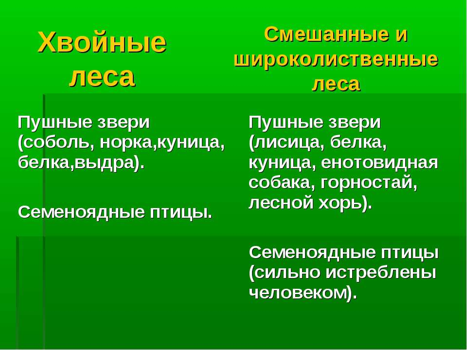 Хвойные леса Смешанные и широколиственные леса Пушные звери (соболь, норка,ку...