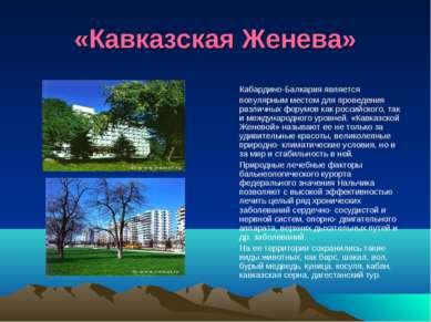 «Кавказская Женева» Кабардино-Балкария является популярным местом для проведе...