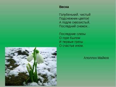 Весна Голубенький, чистый Подснежник-цветок! А подле сквозистый, Последний сн...