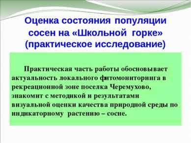 Оценка состояния популяции сосен на «Школьной горке» (практическое исследован...