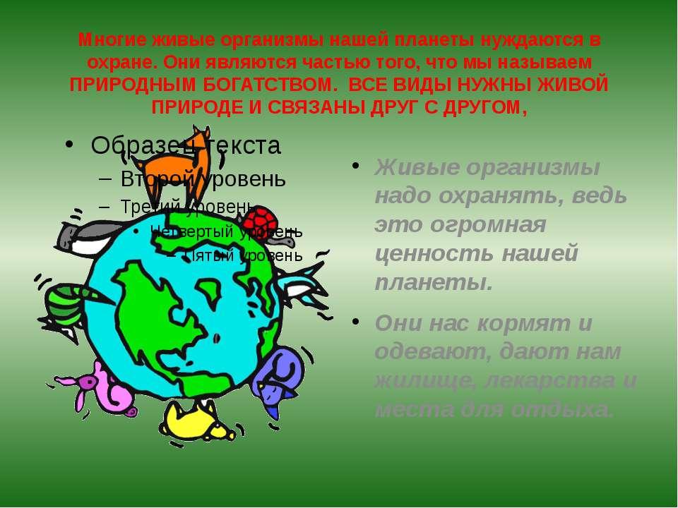 Многие живые организмы нашей планеты нуждаются в охране. Они являются частью ...
