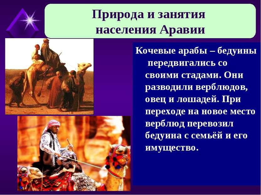 Кочевые арабы – бедуины передвигались со своими стадами. Они разводили верблю...