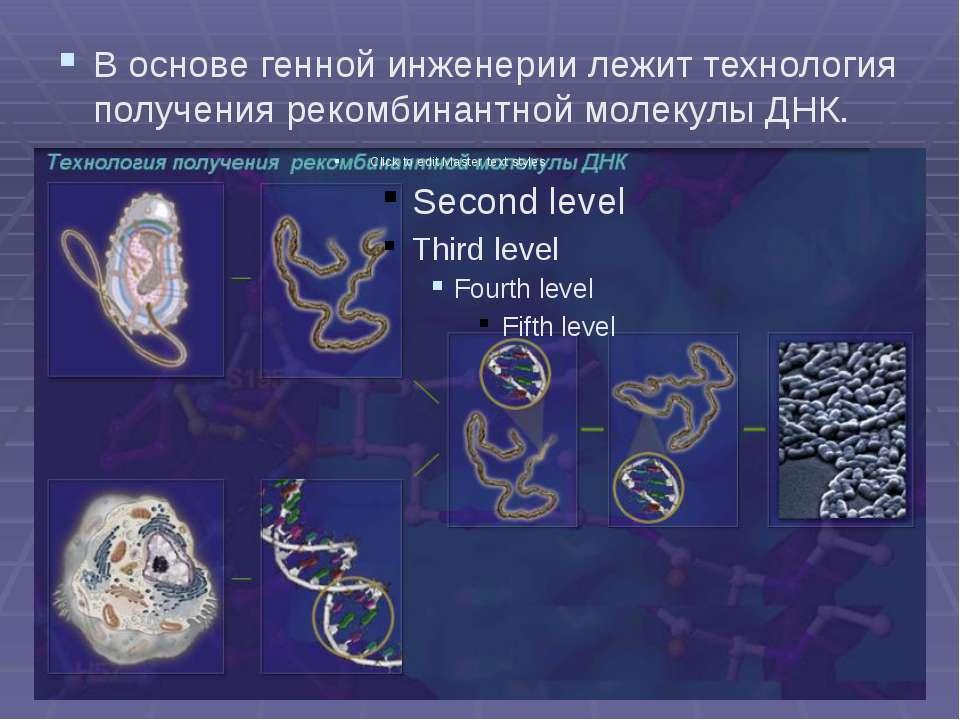 В основе генной инженерии лежит технология получения рекомбинантной молекулы ...