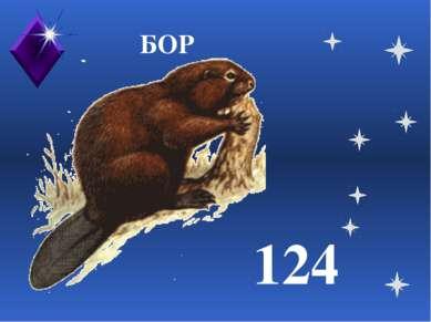 БОР 124
