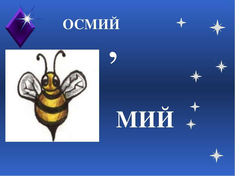 ОСМИЙ , МИЙ