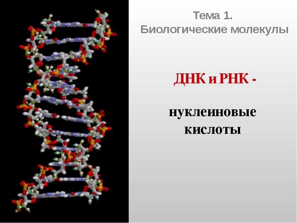 Тема 1. Биологические молекулы ДНК и РНК - нуклеиновые кислоты