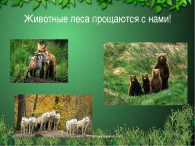Животные леса прощаются с нами! * Free template from www.brainybetty.com * Fr...