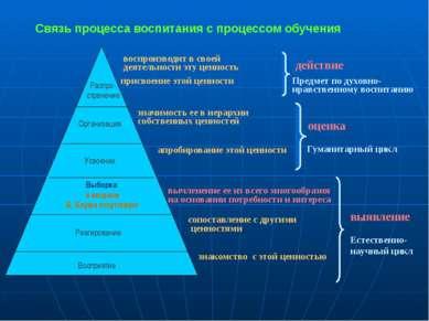 Распро- странение Организация Усвоение Реагирование Восприятие Выборка в моде...