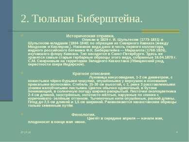 * * 2. Тюльпан Биберштейна. Историческая справка. Описан в 1829 г. И. Шультес...