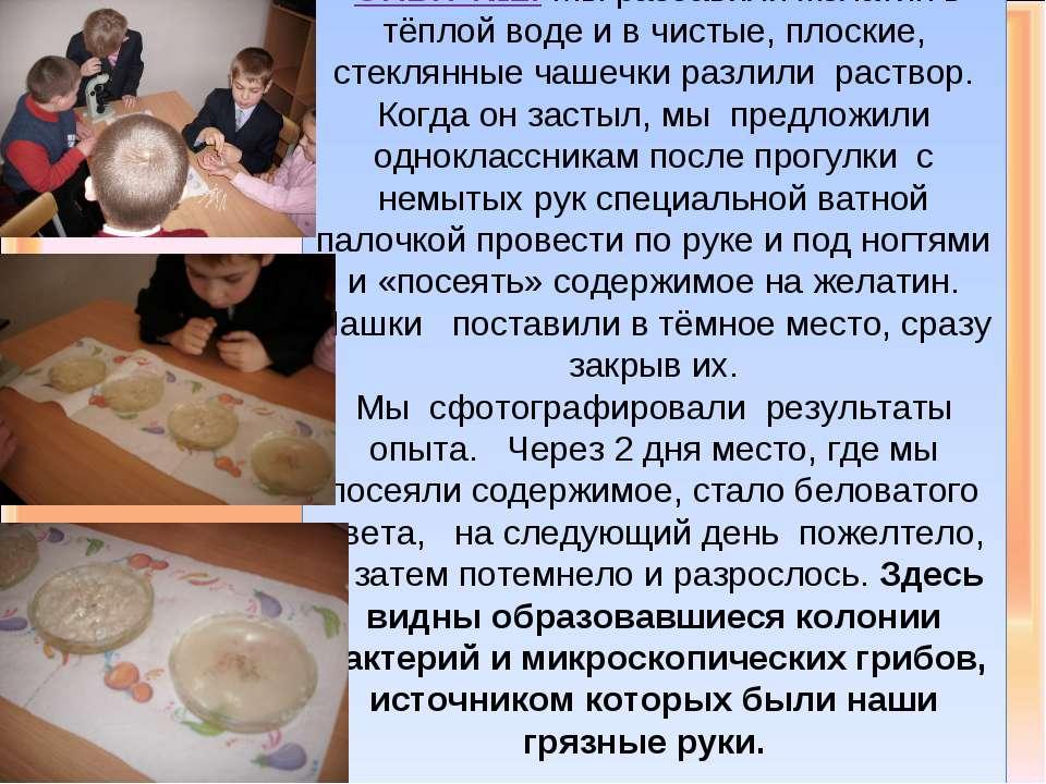 ОПЫТ №2: Мы разбавили желатин в тёплой воде и в чистые, плоские, стеклянные ч...