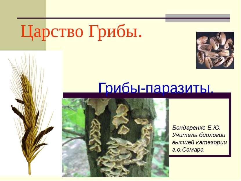 Царство Грибы. Грибы-паразиты. Бондаренко Е.Ю. Учитель биологии высшей катего...