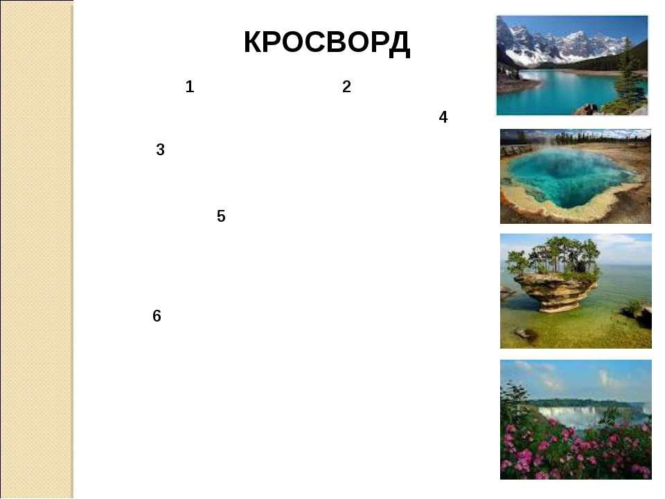 3 1 4 2 5 6 КРОСВОРД