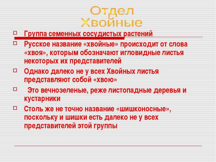 Группа семенных сосудистых растений Русское название «хвойные» происходит от ...