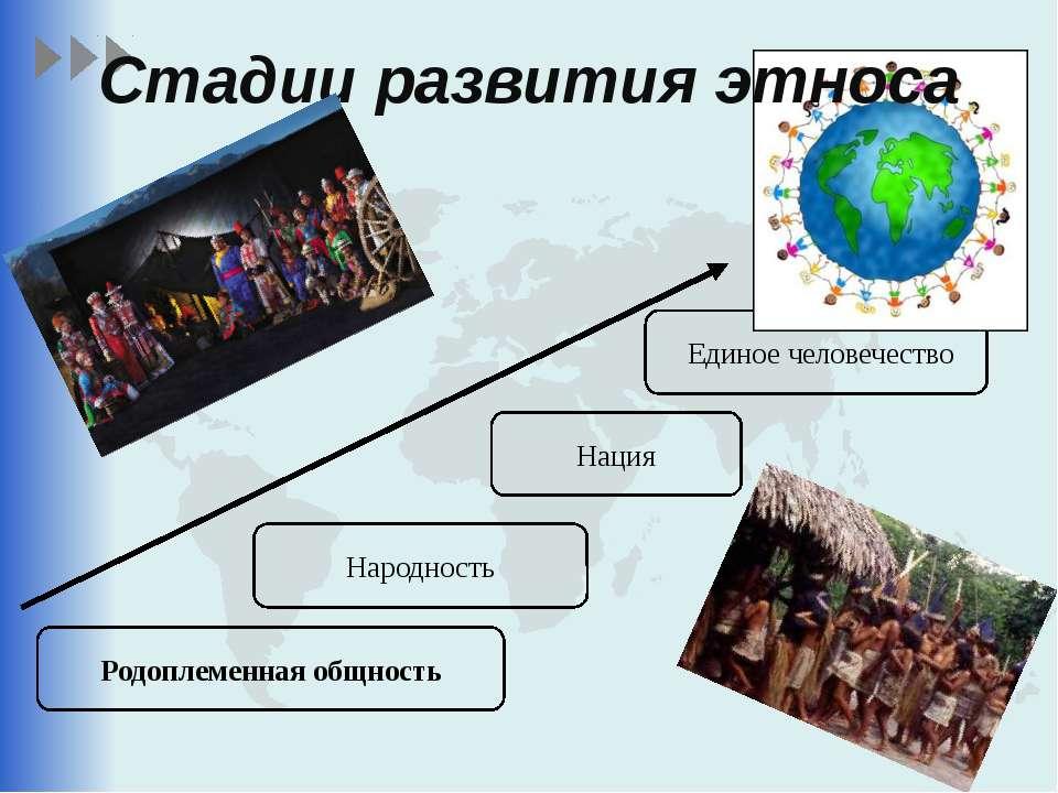 Родоплеменная общность Народность Нация Единое человечество Стадии развития э...