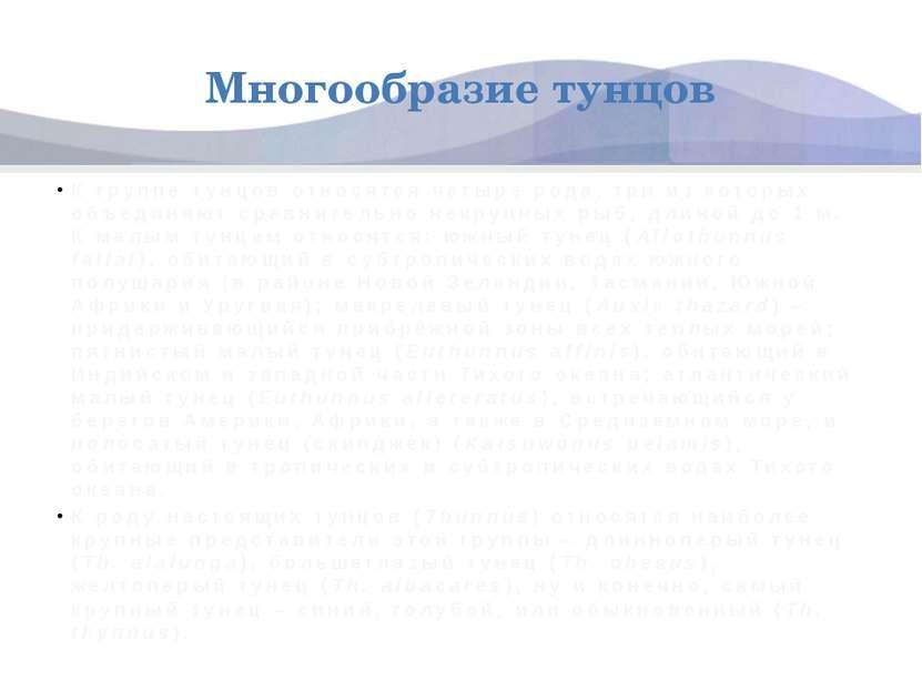 Многообразие тунцов К группе тунцов относятся четыре рода, три из которых объ...