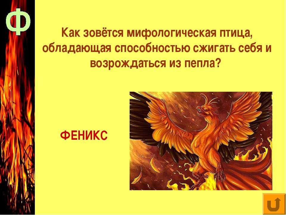 Как зовётся мифологическая птица, обладающая способностью сжигать себя и возр...