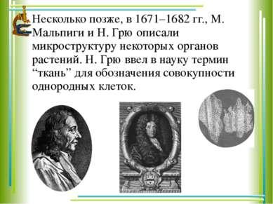 Несколько позже, в 1671–1682 гг., М. Мальпиги и Н. Грю описали микроструктуру...